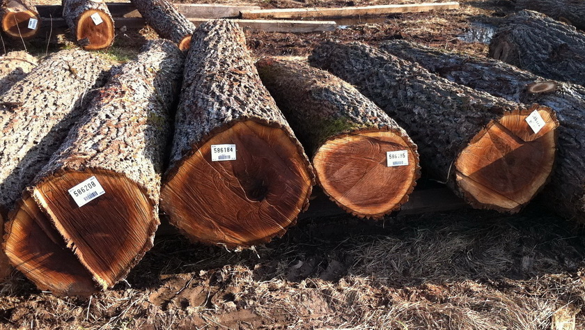 Ecowood_Log_res